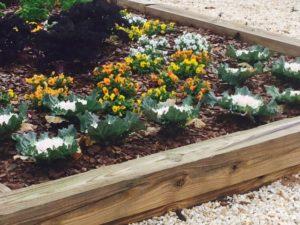 birmingham community garden