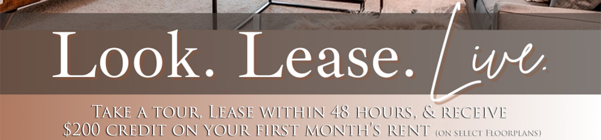 Look Lease Live